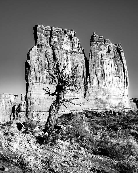 Arches National Park , Tower of Babel, BnW