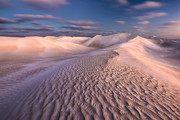 Sandy Meadows