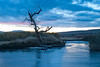 Dawn on the Owens River <br /> near Bishop, California<br /> <br /> Photo by Ron Bernstein 11/24/11 at 6:22:11 AM with a NIKON D3 set to ISO of 800, shutter speed of 4 at f/16.