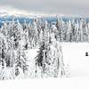 Snowmobile Heaven