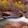 Zion National Park, Utah USA