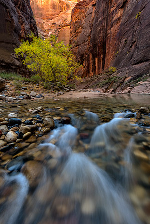The Narrows in the Fall