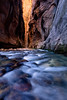 """Narrows Glow""  Incredible bounce light in the Narrows of Zion National Park, Utah."