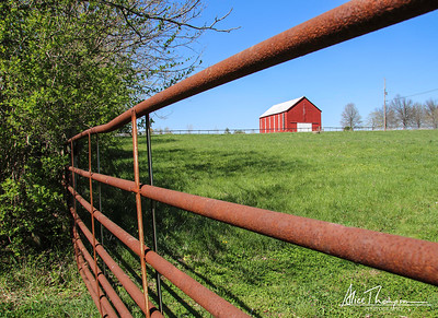 Red Barn - Georgetown, KY