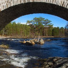 Invercauld Bridge with a Scots Pine Tree. John Chapman.