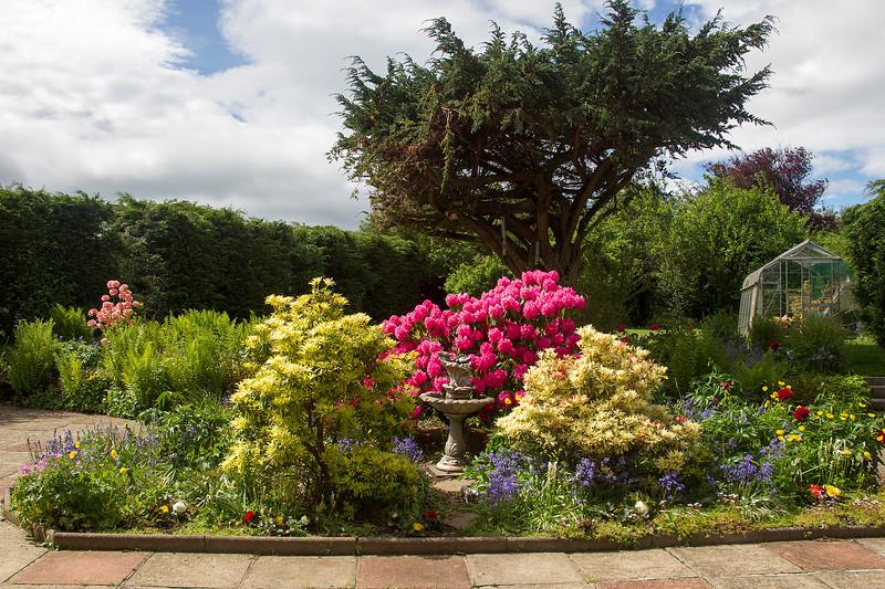 My Garden. John Chapman.