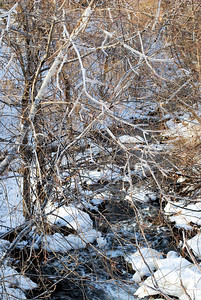 A stream amongst the ice.  Chelsea, QC