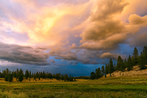 Summer Storm at Crooked Meadow