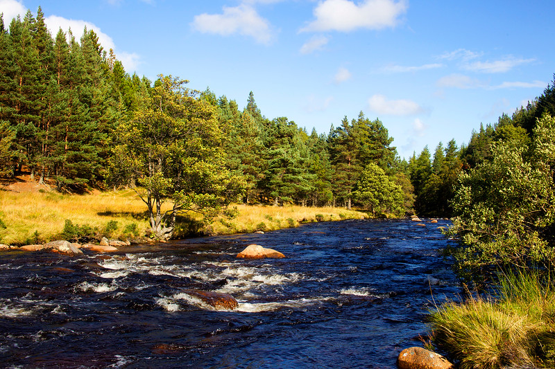 River Muick. John Chapman.