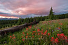 An early morning summer sunrise on Shrine Ridge<br /> Vail Pass, Colorado