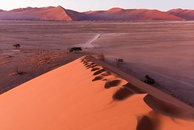 Dune 45 steps