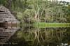 Dunns Swamp_5466