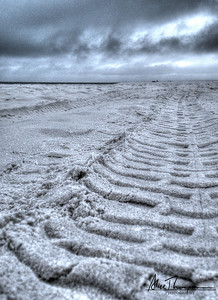 Sandy Tire Track - Seagrove Beach, FL