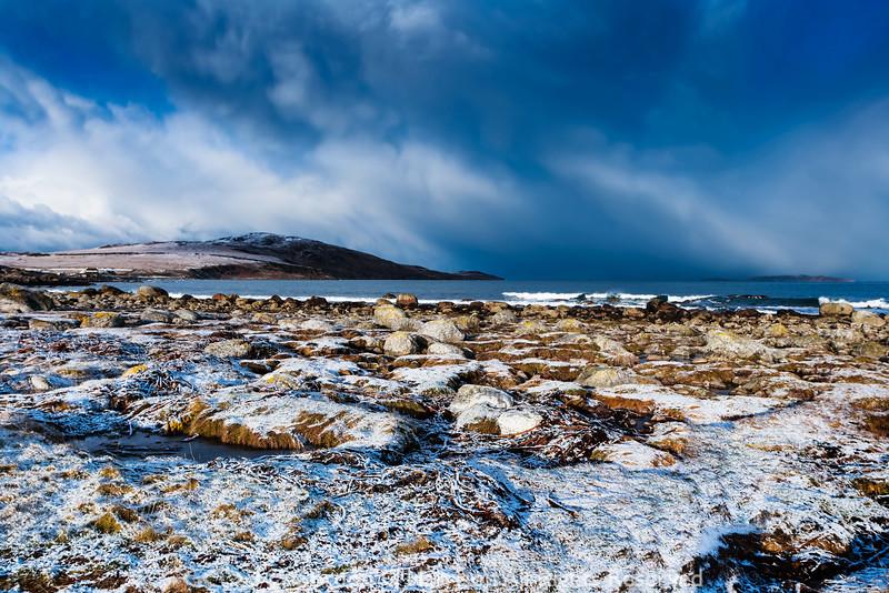 Photo 2578: Winter's Arrival