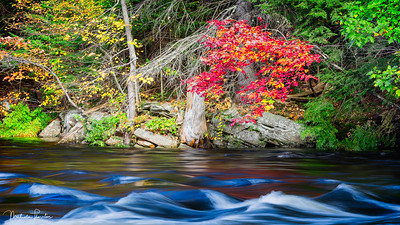 Oxtongue River in Autumn