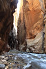 Vertical Narrows<br /> <br /> A vertical composition of the most dramatic section of Zion National Park's 'The Narrows'.
