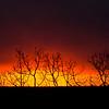 A firey Sunset