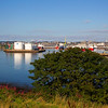 Aberdeen Harbour. John Chapman.