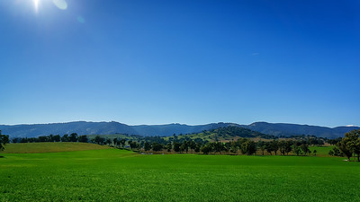 Green Plains of the Hunter Valley