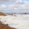 Rough Seas with a small flock of Oystercatchers. Aberdeen. John Chapman.