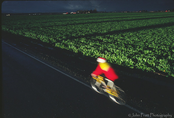Cyclist, Skagit Valley