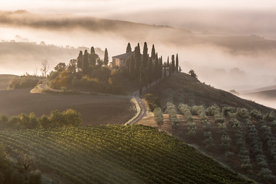 The Belvedere on a misty morning