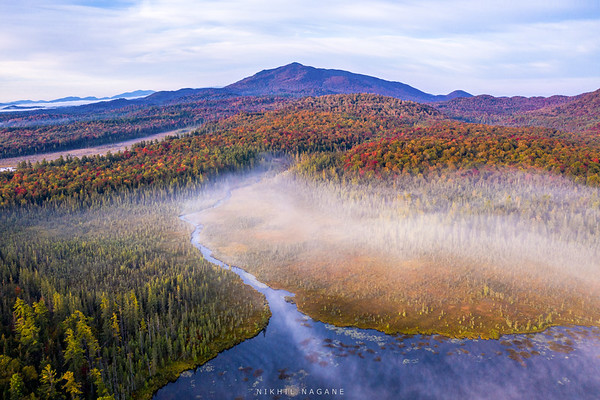 Bogs of Adirondack #2
