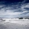 Silver Desert