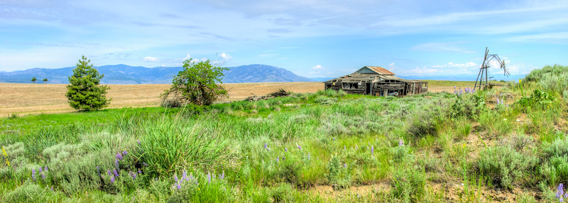 Old barn, Top of McNeil Canyon Rd, Orondo, WA