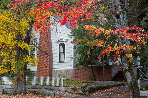 Nevada City's Fall Colors