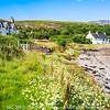 Photo 3311: Beethoven on Isle Martin