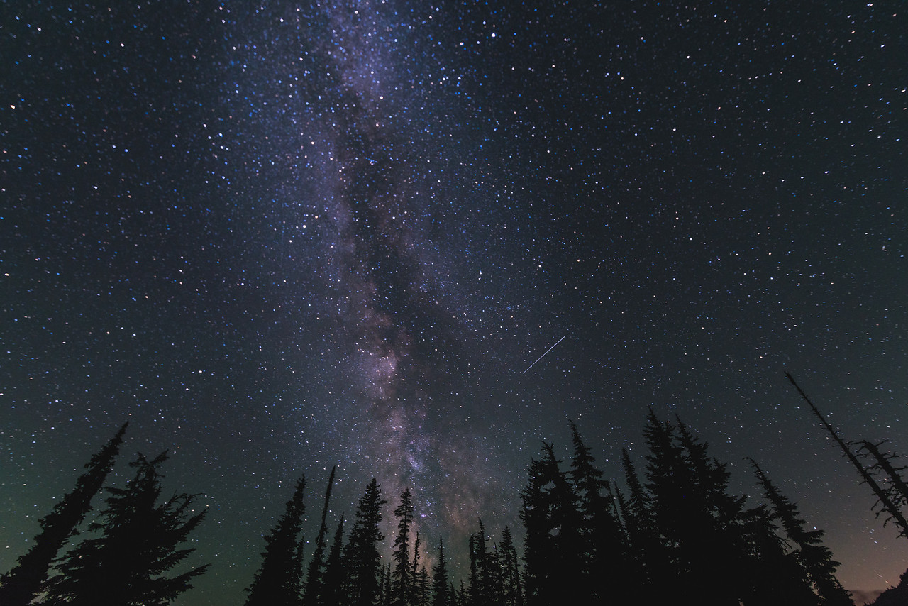Mountain larch trees reach for the stars, PCT, Alpine Lakes Wilderness, WA