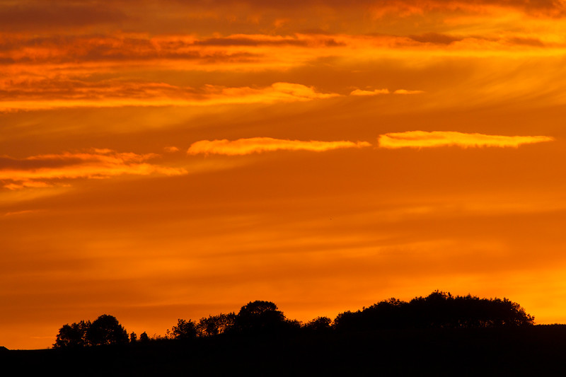Sunset. John Chapman.
