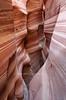 Zebra Vertical<br /> <br /> A vertical composition of lovely Zebra Canyon.
