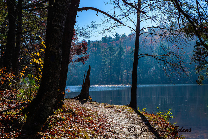 """""""Lake in Fall"""""""
