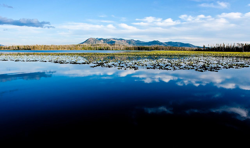 Riddle Lake, Yellowstone National Park