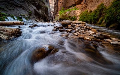 Flow, The Narrows | Zion National Park