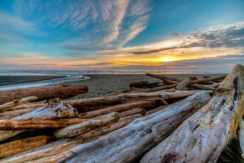 Beach logs, Kalaloch Beach, WA