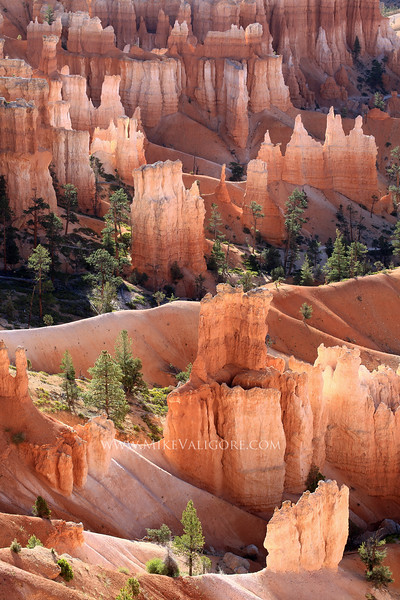 Queen's Garden (vertical)<br /> Bryce Canyon, Utah