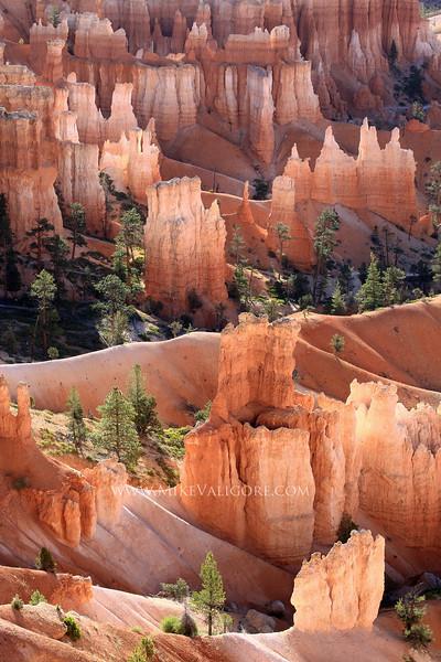 Queen's Garden (vertical)<br /> Bryce Canyon, Utah