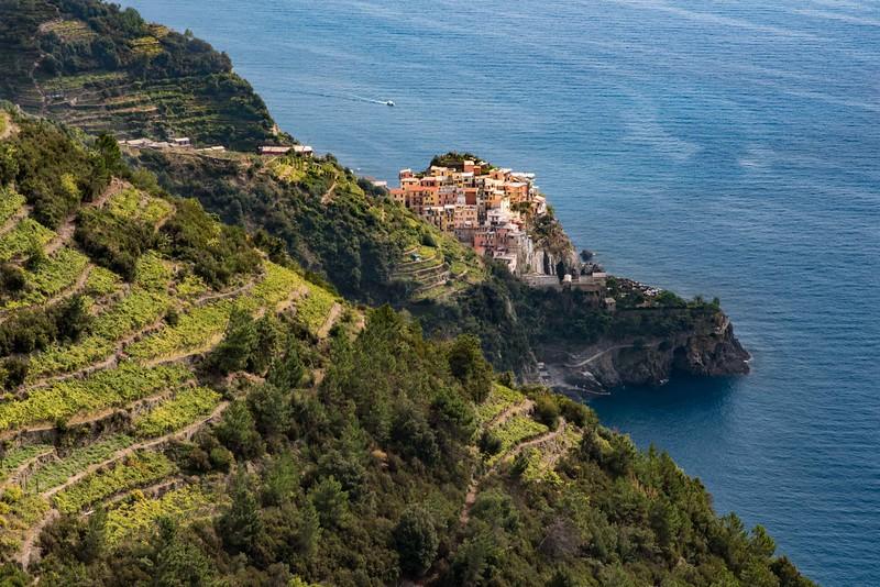 Terraced vineyards and Manarola