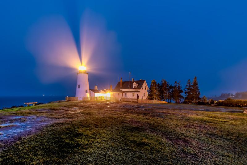 Point Light