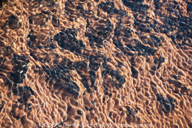 Photo 2385: Ripples in stream running over a beach, Wester Ross, Scotland