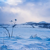 Photo 3320: Strathconon Hills