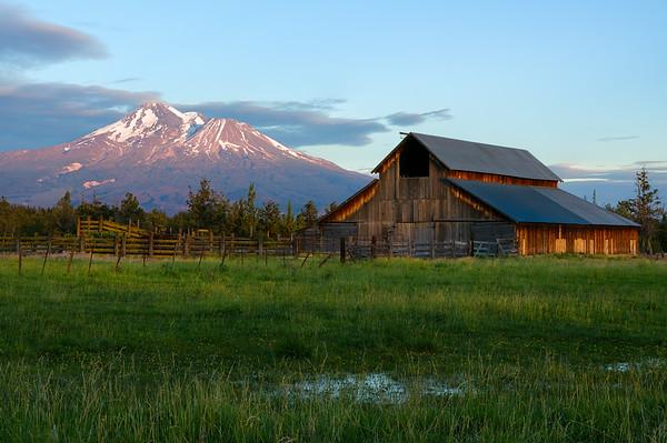 The Old Barn at Shasta