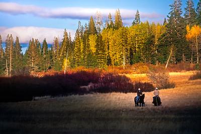 Horseback in the High Sierra