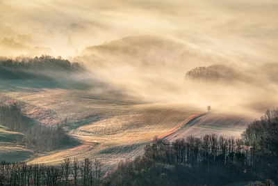 Fog flowing over frosted pastureland. Pinnacle, NC.
