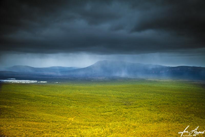 Moist Meadows