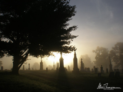 Foggy Morning - St. Michael's Cemetery, Louisville, KY