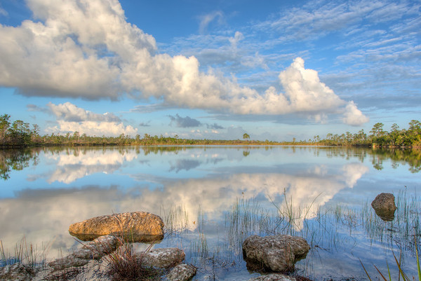 April Image - Everglades National Park